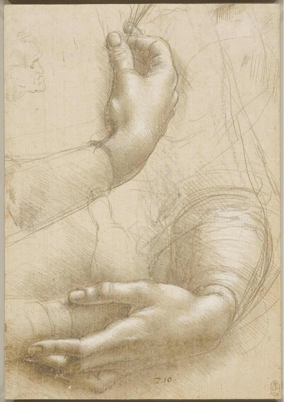A drawing of a woman's hands by Leonardo da Vinci