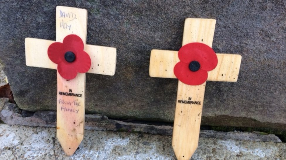 What S So Different About The Scottish Poppy Bbc News