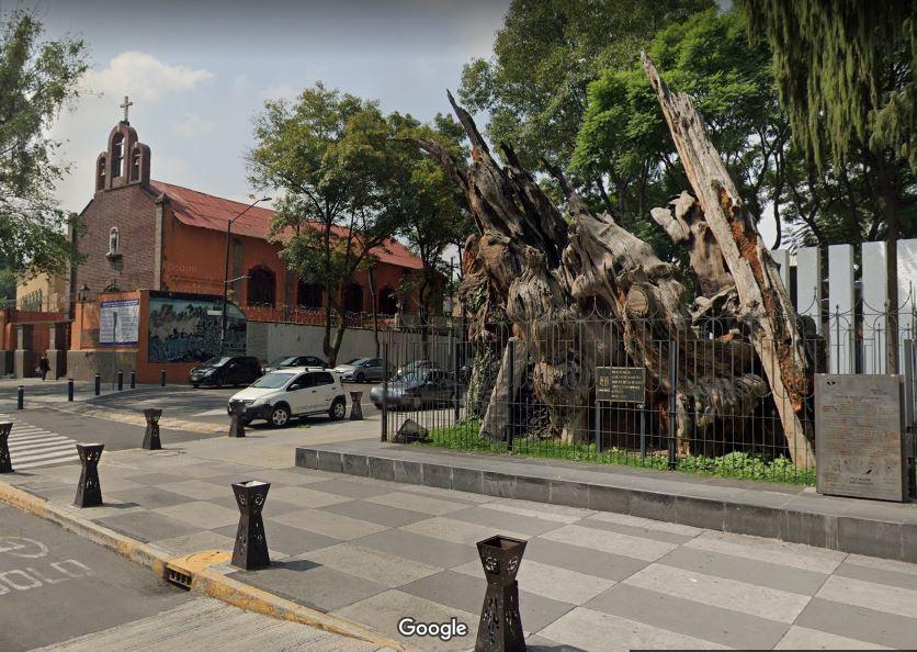El Árbol de Ahuehuete de Tacuba