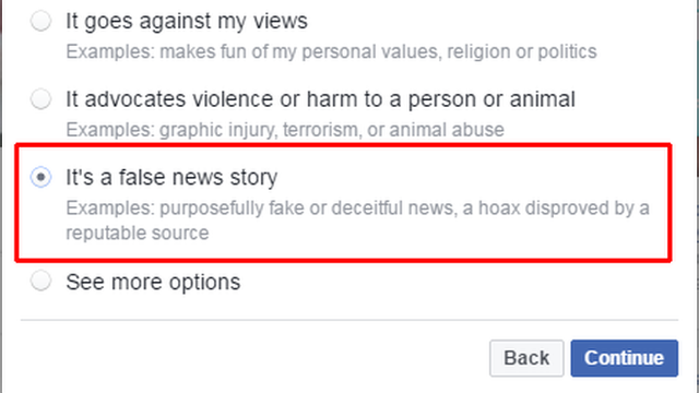 Facebook screen for reporting false news story