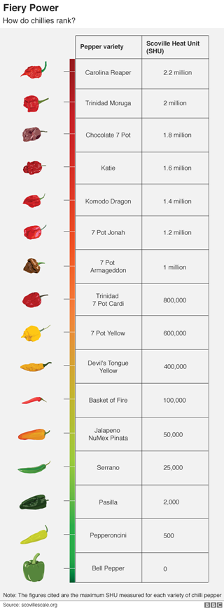 Graphic showing chilli power
