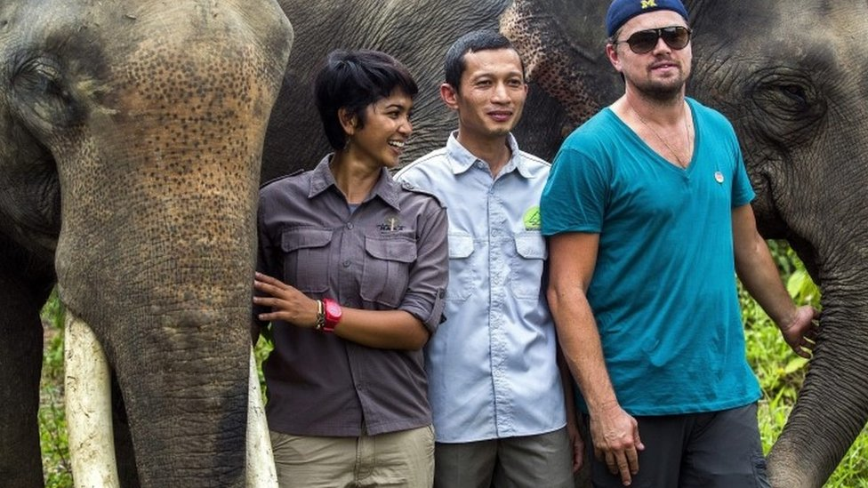 Leonardo DiCaprio (R) with elephants at Gunung Leuser National Park in Aceh, Indonesia