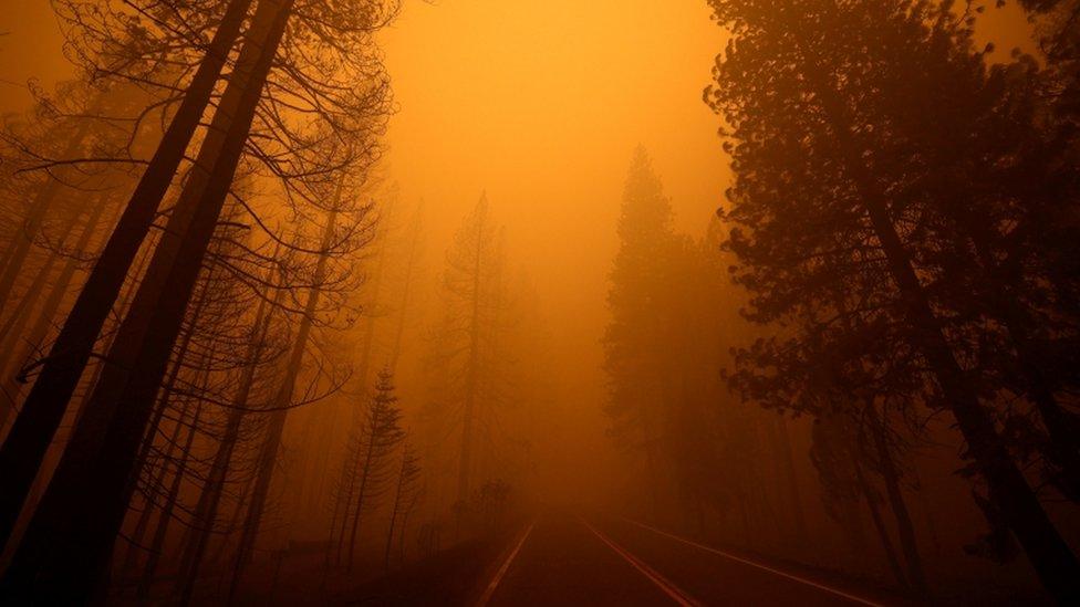 Una ruta cerca de Greenville, California.