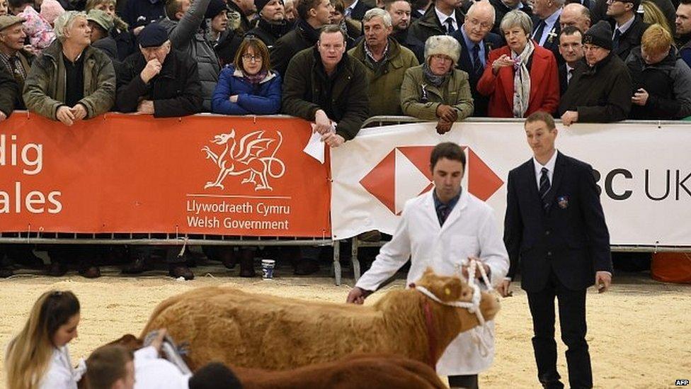 Theresa May during a visit to the Royal Welsh Winter Fair at Builith Wells