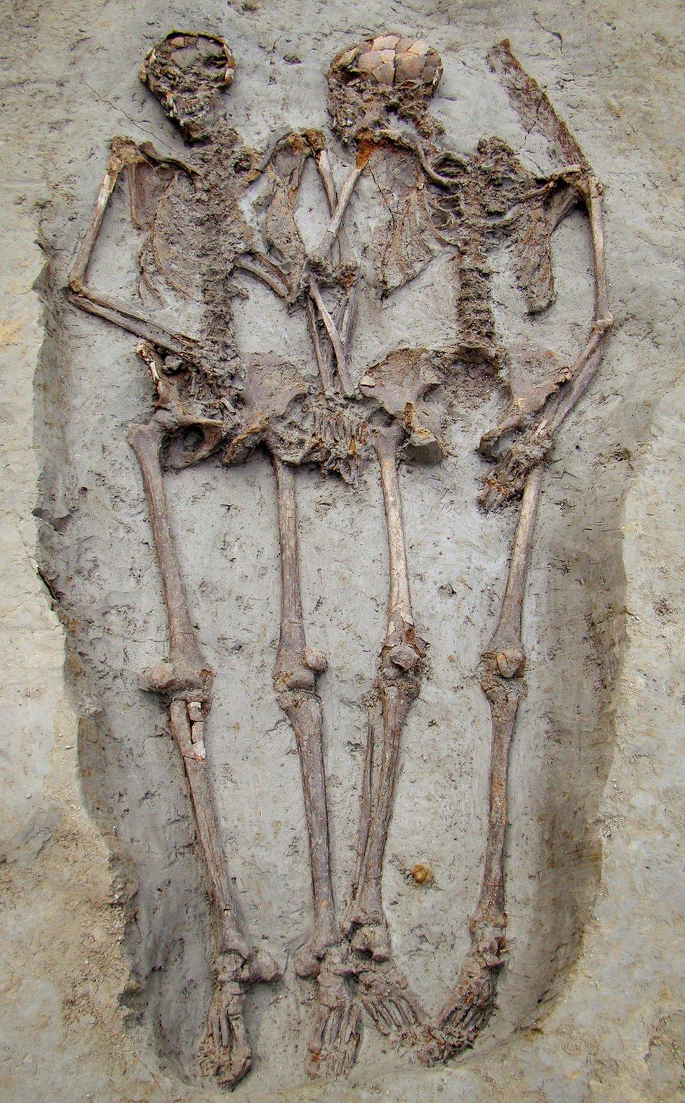 Esqueletos.