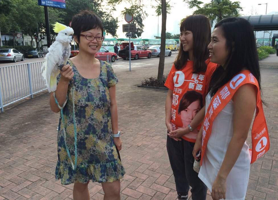 Picture of bird lady at HK local elections on 22 November 2015