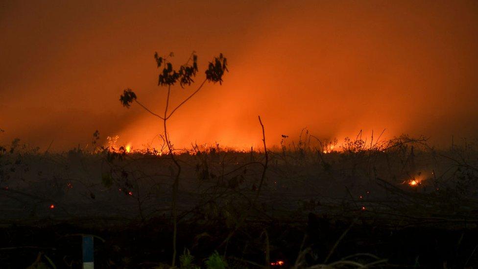 incendios en Indonesia, 9 de septiembre