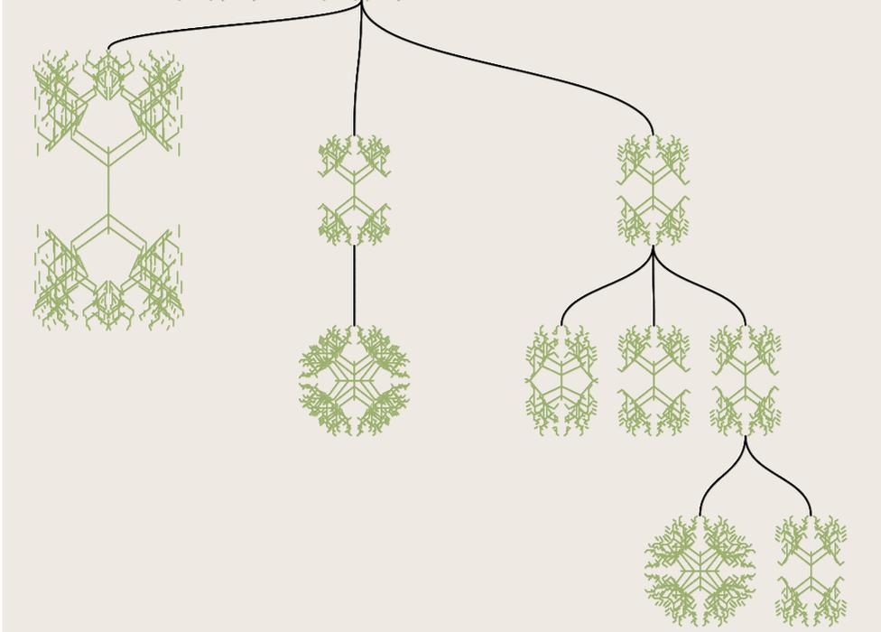 diagram of biomorphs