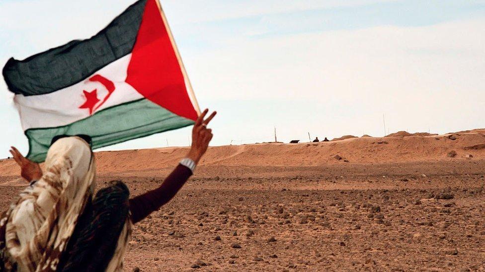 Una mujer saharaui muestra la bandera saharaui ante el muro marroquí.