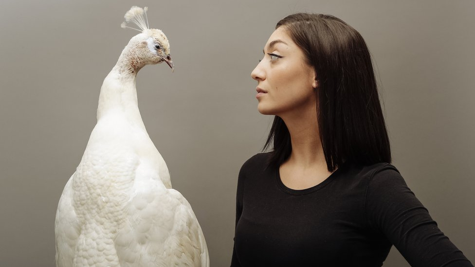 The women who are killing it in taxidermy