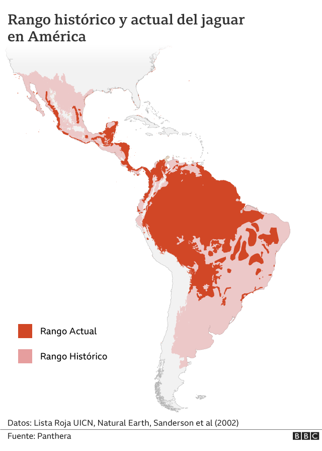 Rango histórico y actual del jaguar en América