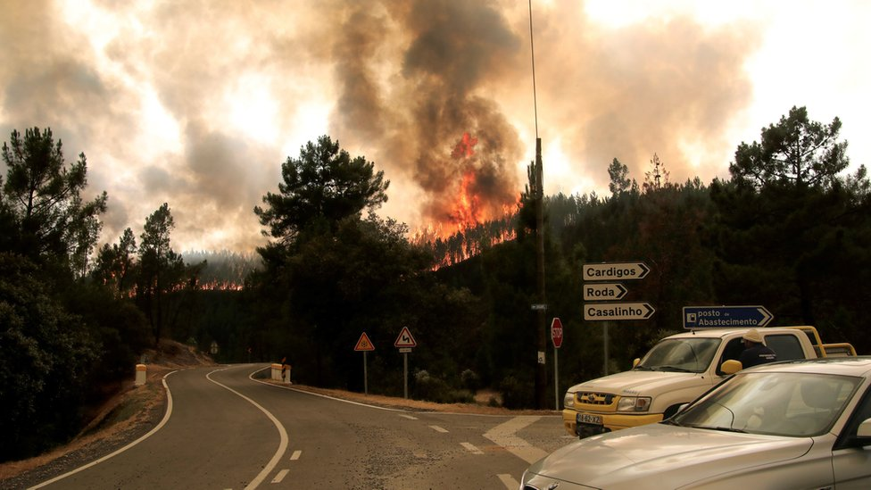 Vehicles pass in front a forest fire in the area of Vila de Rei, Portugal, 21 July 2019
