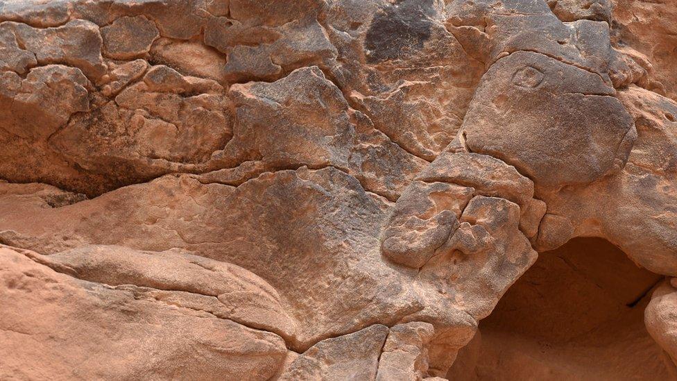 Glava kamile uklesano u stene
