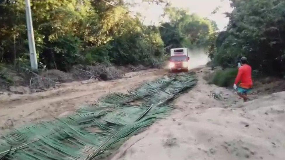 Caminhão para sobre folha colocadas na estrada