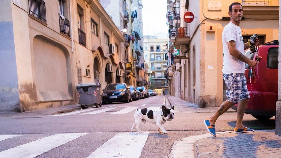 رجل يعبر الطريق بكلب صغير