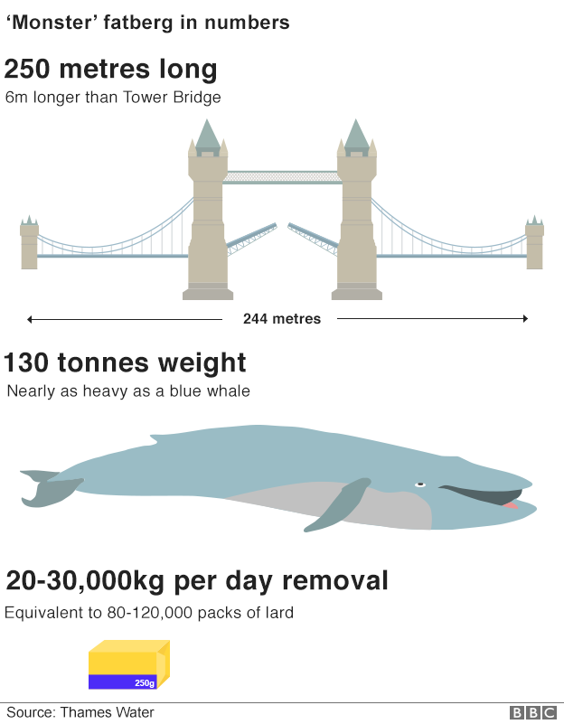 Infographic showing fatberg compared with Tower Bridge and a blue whale