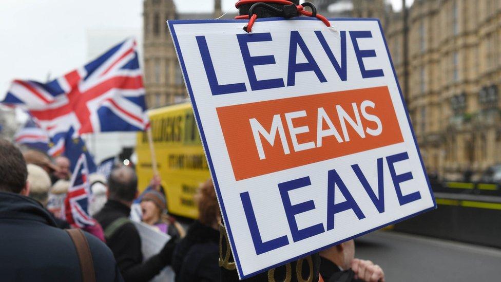 """""""Irse significa irse"""", dice un cartel en una protesta para exigir que se produzca la salida de Reino Unido de la Unión Europea"""