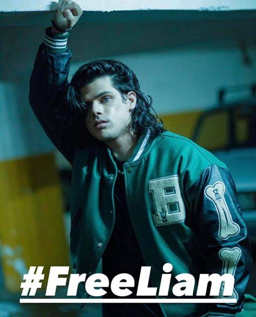 Foto pidiendo la liberación de Liam.