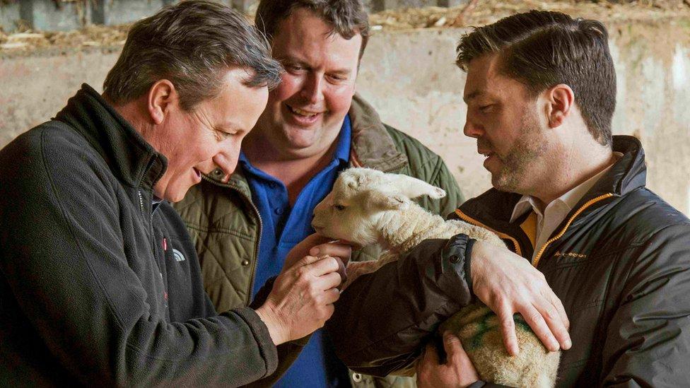 Stephen Crabb and David Cameron