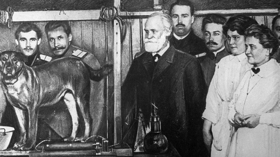 Pávlov es conocido sobre todo por formular la ley del reflejo condicional. Aquí aparece (centro, con barba) haciendo sus primeros experimentos en el departamento de Psicología del la Academia Militar de Medicina, 1911.