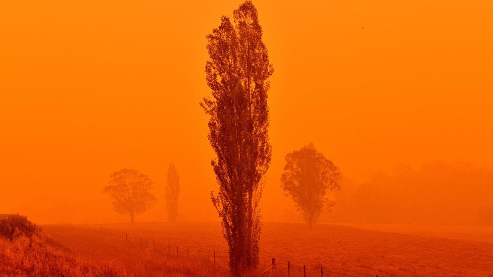 حرائق في ساوث ويلز