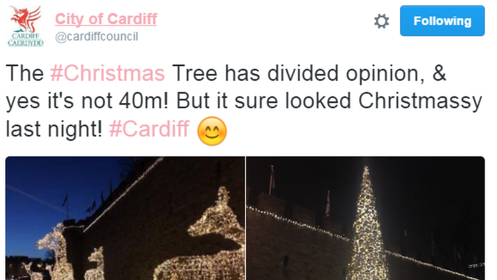 The authority confirmed the tree was 40ft - not the 40m advertised