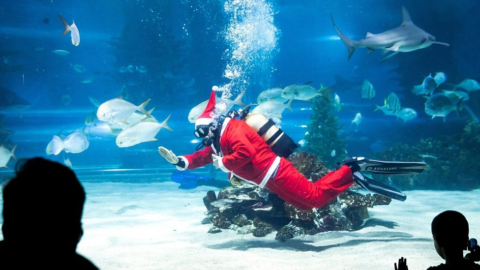 Santa goes scuba diving with a mermaid and Rudolph