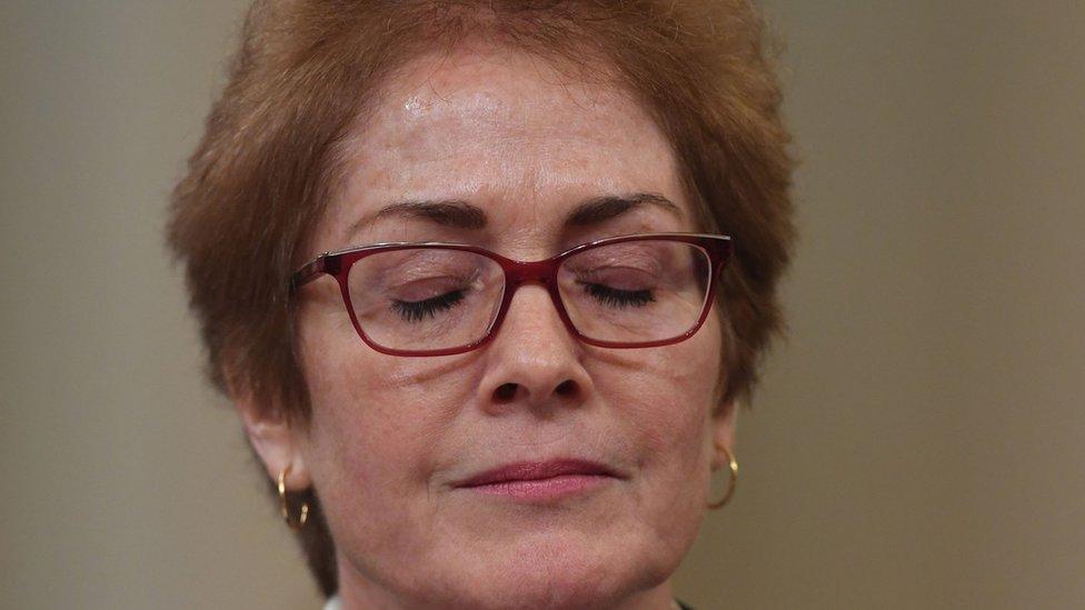 السفيرة ماري يوفانوفيتش