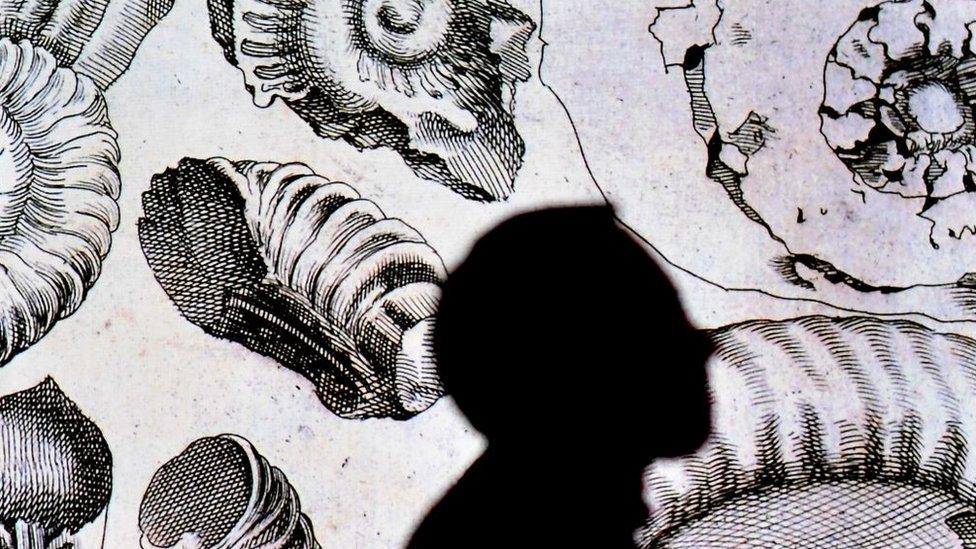 Ilustraciones de Da Vinci con la sombra de un hombre.