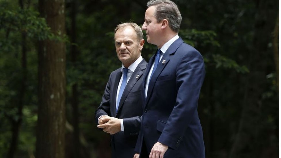 Brexit: David Cameron warned by Donald Tusk over 'stupid referendum'