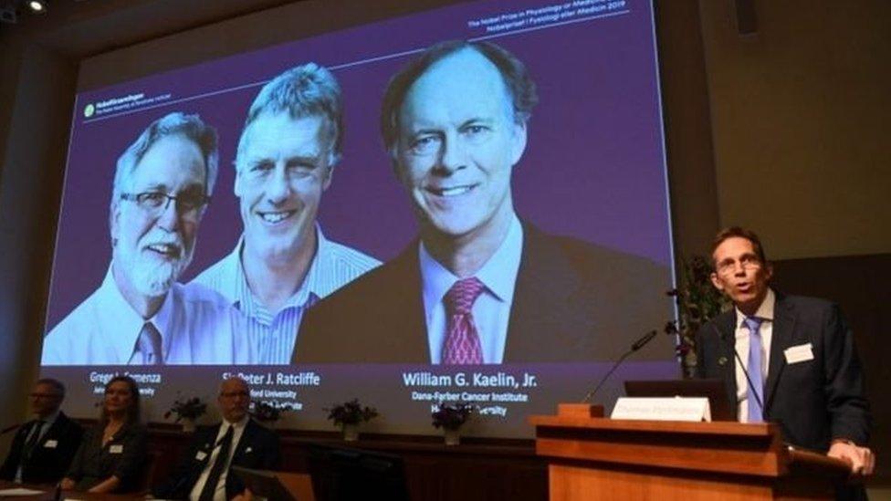 Нобелівська премія з медицини: хто і за що її отримав