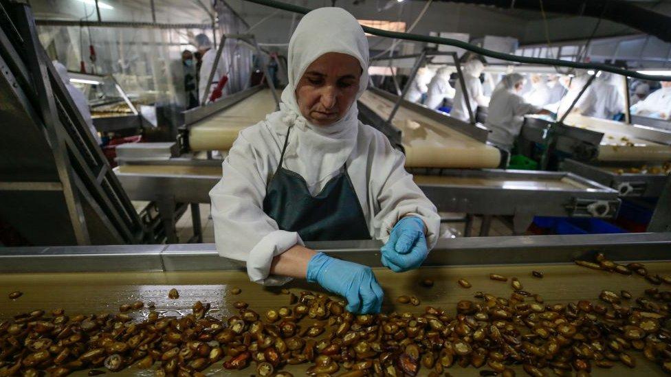 Chilli processing plant in Turkey