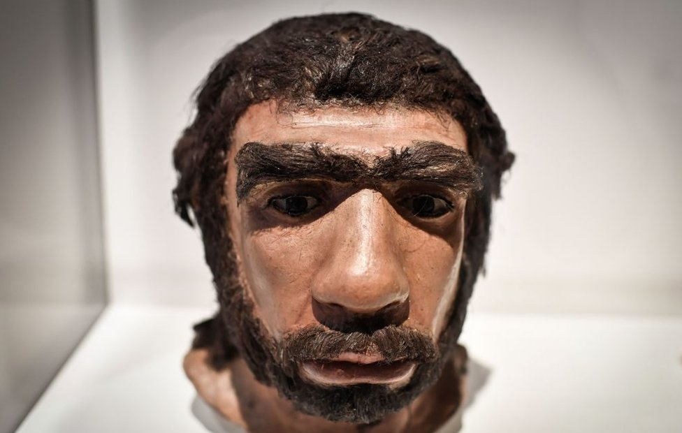 Recreación del hombre de neandertal