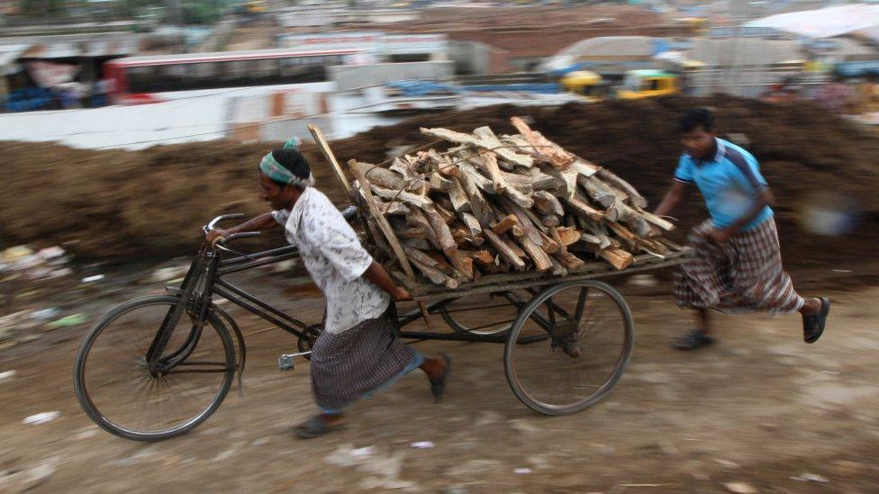 Deforestación en Bangladesh