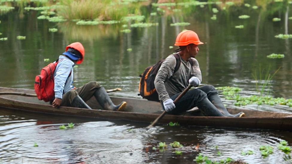 Trabajadores de Osinfor inspeccionando la Amazonía.