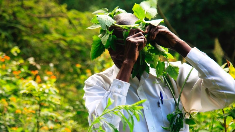Duhovni vođa nosi krunu napravljenu od biljaka