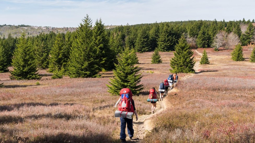 Students hiking in the wilderness
