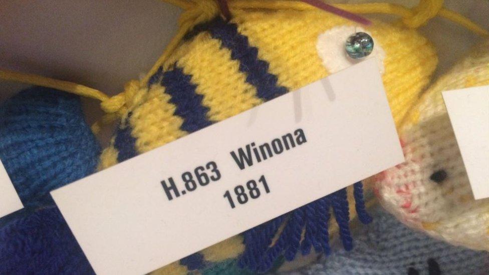 H.863 Winona