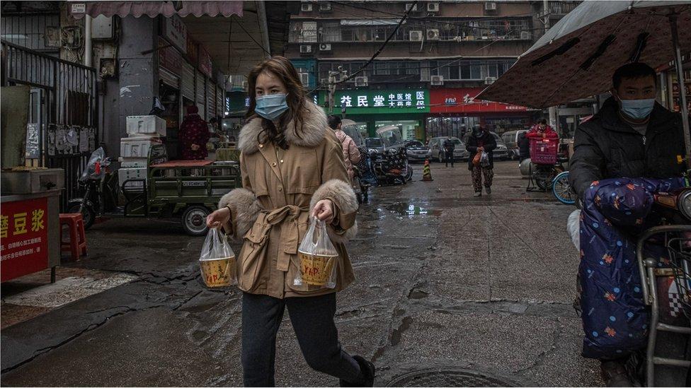 Coronavírus: as conclusões da missão da OMS que investiga em Wuhan origem da covid-19
