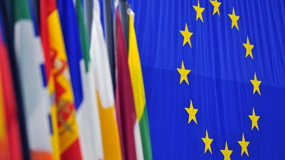 Европа выбирает общий парламент. Зачем он нужен и кто в него попадает