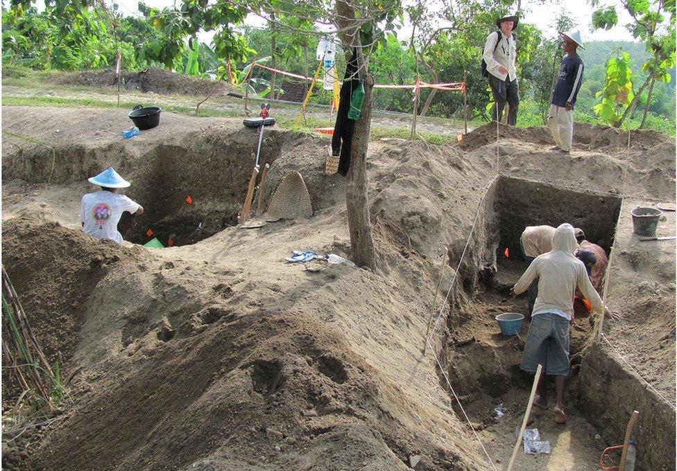 Excavaciones realizadas en Ngandong en 2010.