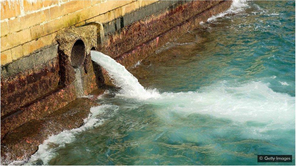 在上世紀80年代,香港一半的生活污水和工業廢水會未經處理就直接排放到海中。