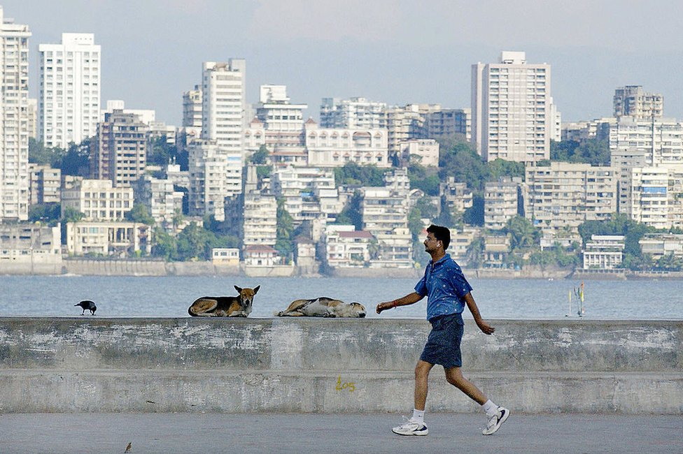An Indian man gets in early morning exercise against a backdrop of a section of the city, as dogs rest along Marine Drive in Bombay, 10 October 2004.