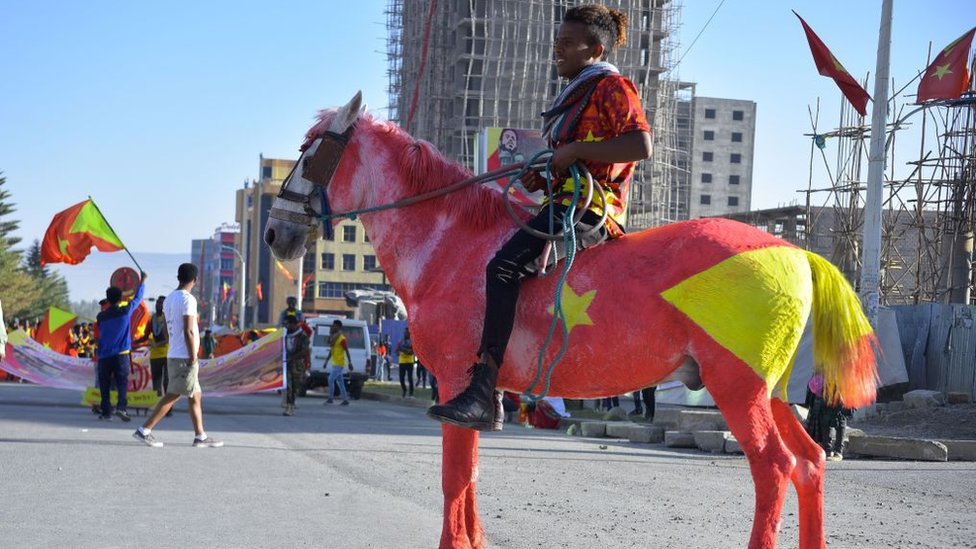 A resident of Mekelle region rides a horse painted in the colours of the Tigray regional flag as they attend celebrations marking the 45th anniversary of the launching of the 'Armed Struggle of the Peoples of Tigray', on February 19, 2020, in Mekelle