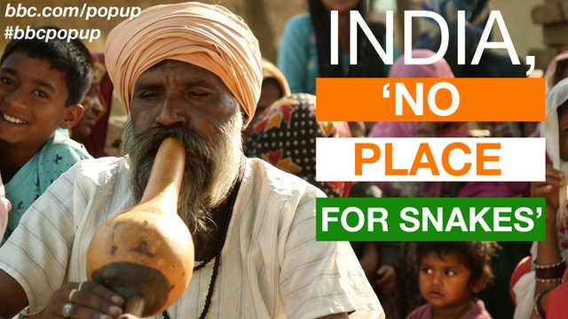A former snake charmer playing the pipe