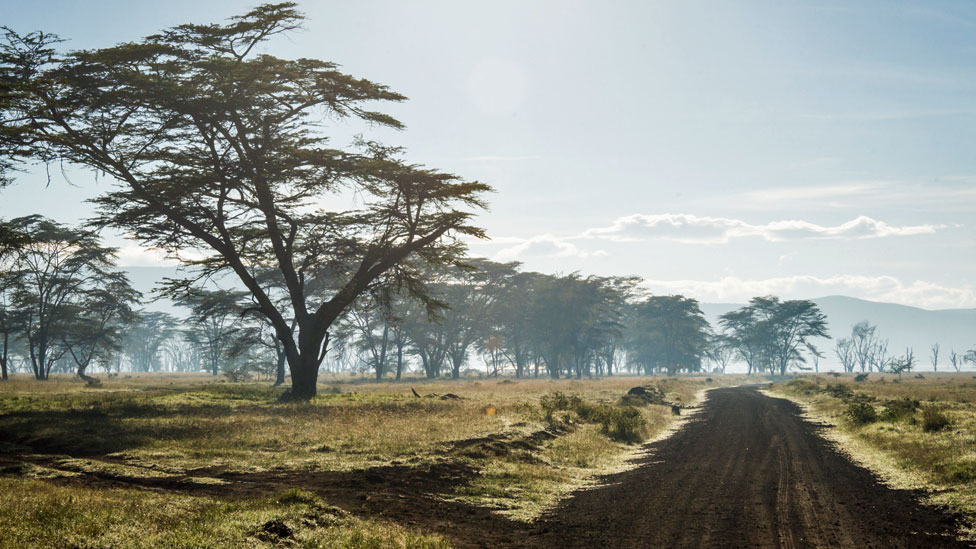 Trocha en Nakuru, Kenia