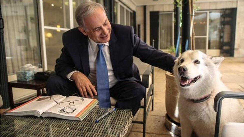 Israel Prime Minister Benjamin Netanyahu with recently adopted dog in August