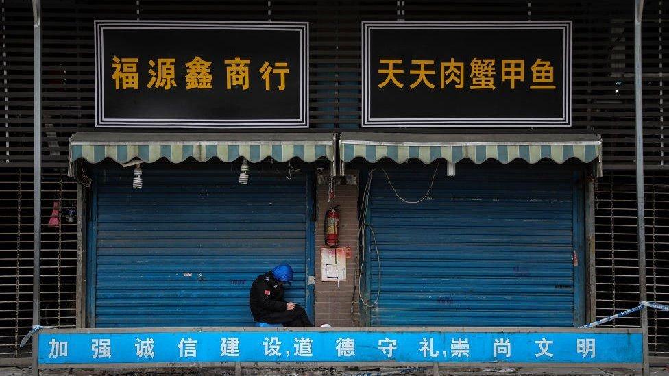 سوق ووهان للأغذية البحرية