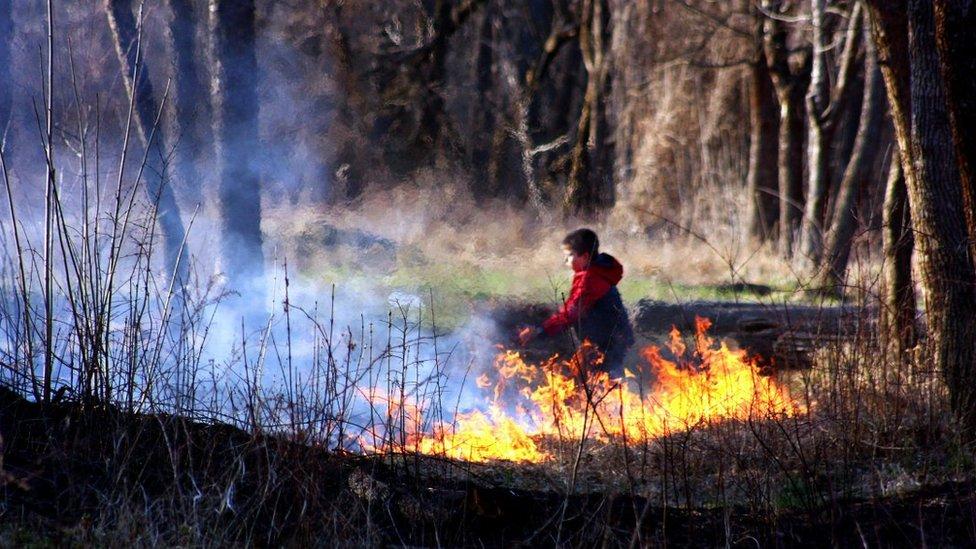 В Україні 5-й рівень пожежонебезпеки: чому екологи б'ють на сполох