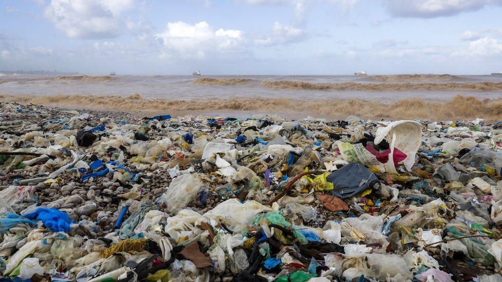 Plastik atıklar, okyanusların en uzak ve derin noktalarında görülüyor.